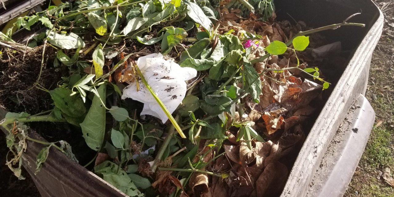 Composting: Backyard method