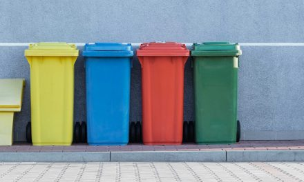 Seattle guide to recycling right