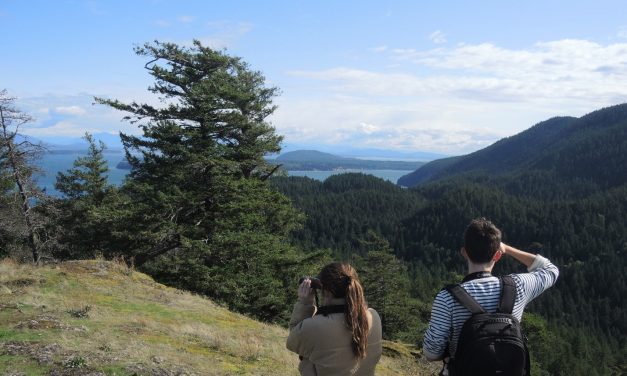 Something Besides Economic Growth in One of Washington's Pristine Places:  Thinking Green on Cypress Island