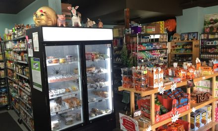 Vegan Haven: aptly named and Earth-friendly